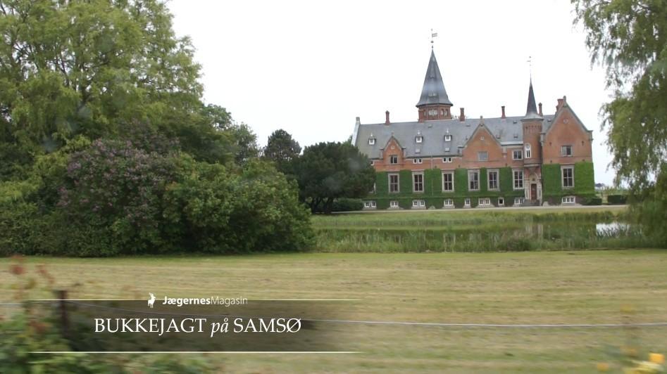 Bukkejagt på Samsø - Brattingsborg Gods