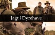 Jagt i Dyrehave